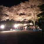 2014花見会15