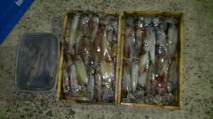 釣りクラブ140713-04
