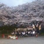 2015花見会05