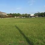 東港草刈04